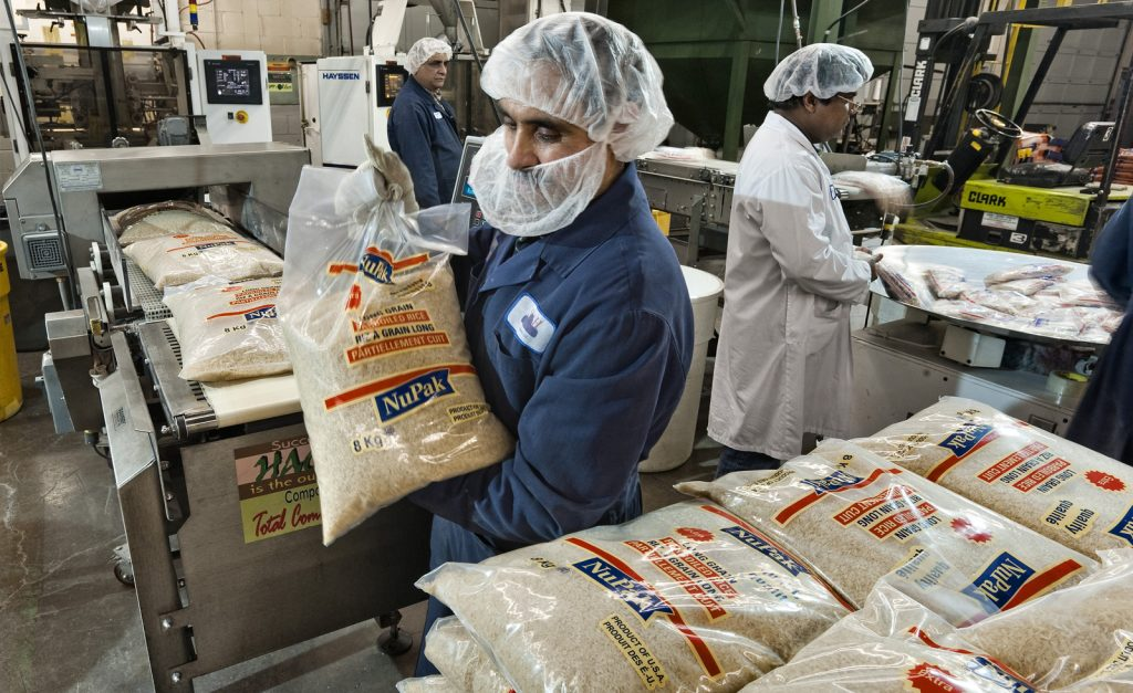 services - Rice Processing
